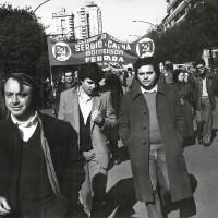 """Ferrara, primissimi anni Settanta. Una manifestazione di protesta contro il """"piano chimico"""""""
